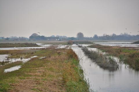 Tilskud til etablering af mindre vådområder og vandhuller - Østdansk Landboforening